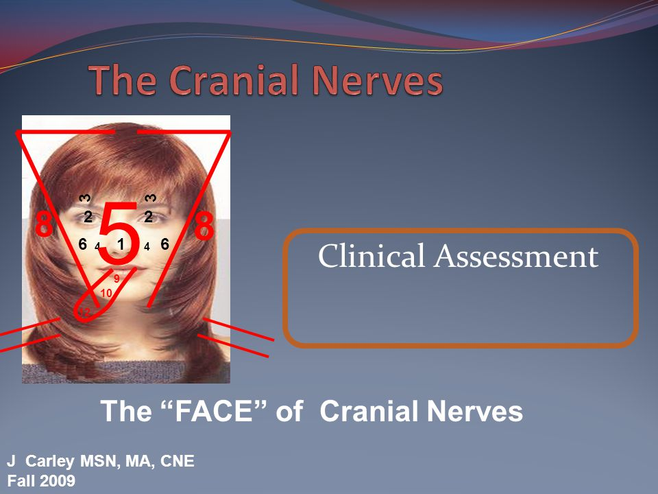 Cranial Nerves CN VII – Facial Nerve Testing: Branchial motor component: facial expression Special Sensory: taste to the anterior 2/3 of tongue Signs of Dysfunction: Hemiparesis Dry eye Lagophthalmos Dry mouth Loss of taste O O O T T A F A G V S H
