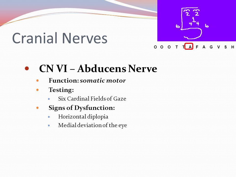 Cranial Nerves CN VI – Abducens Nerve Function: somatic motor Testing: Six Cardinal Fields of Gaze Signs of Dysfunction: Horizontal diplopia Medial de
