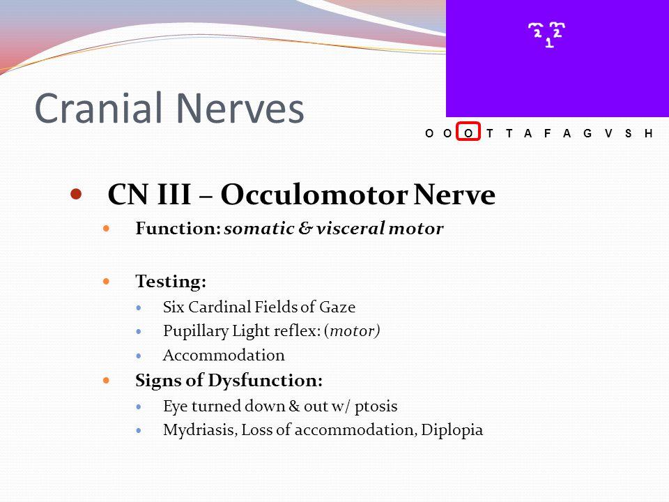 Cranial Nerves CN III – Occulomotor Nerve Function: somatic & visceral motor Testing: Six Cardinal Fields of Gaze Pupillary Light reflex: (motor) Acco