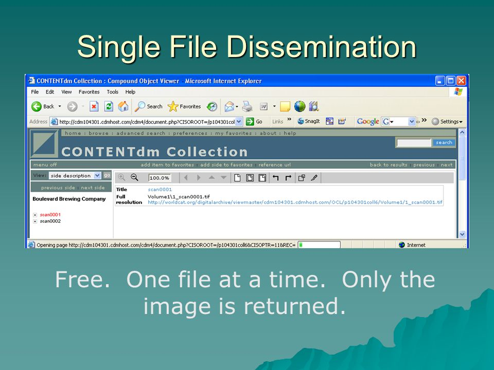 Single File Dissemination Free. One file at a time. Only the image is returned.