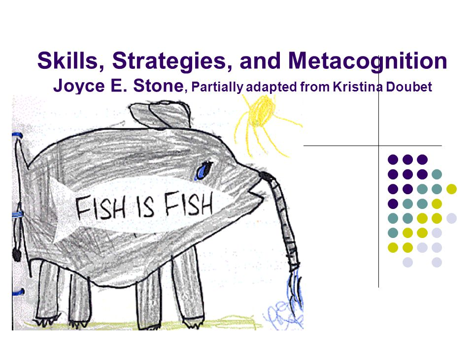 Skills, Strategies, and Metacognition Joyce E. Stone, Partially adapted from Kristina Doubet