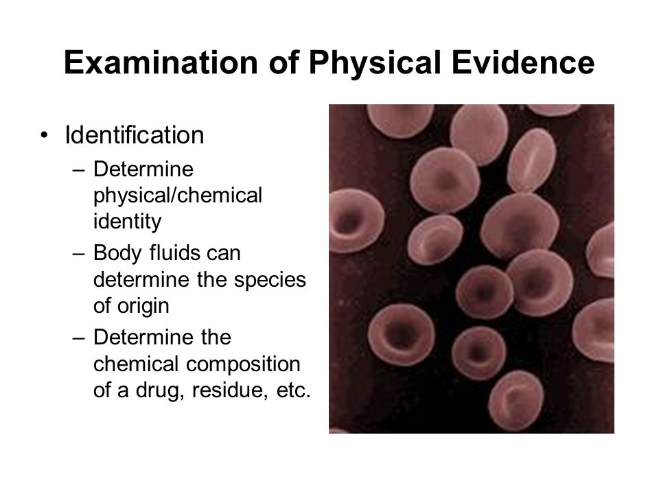 Examination of Physical Evidence Identification –Determine physical/chemical identity –Body fluids can determine the species of origin –Determine the