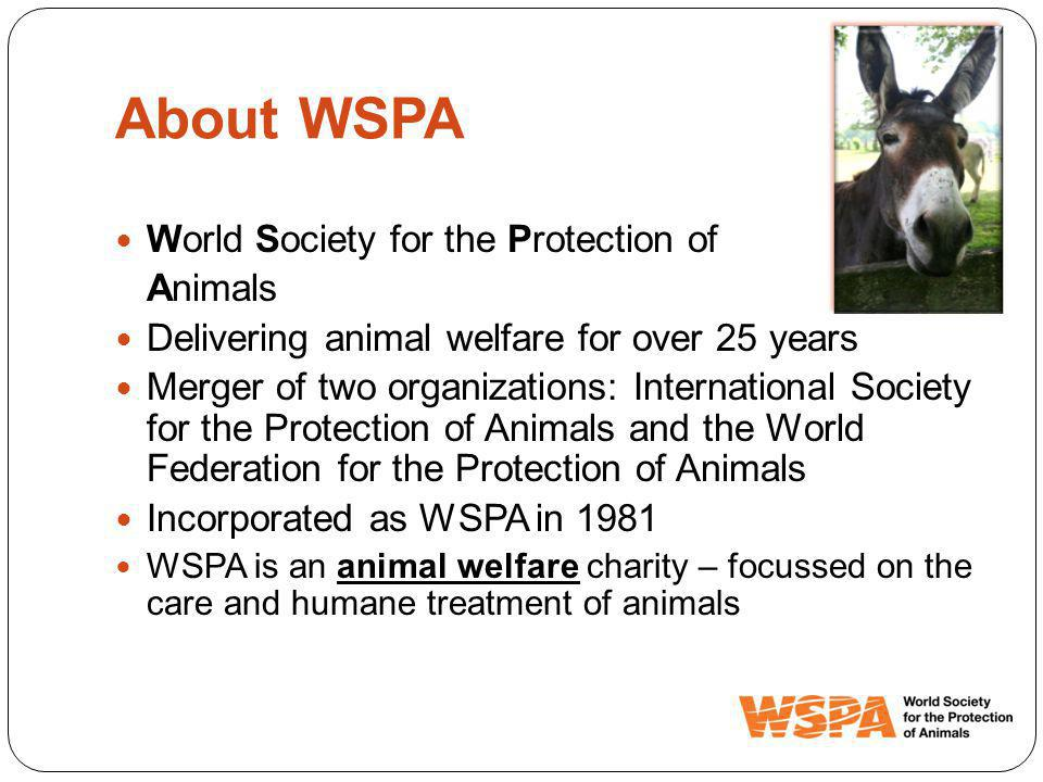 About WSPA World Society for the Protection of Animals Delivering animal welfare for over 25 years Merger of two organizations: International Society for the Protection of Animals and the World Federation for the Protection of Animals Incorporated as WSPA in 1981 WSPA is an animal welfare charity – focussed on the care and humane treatment of animals