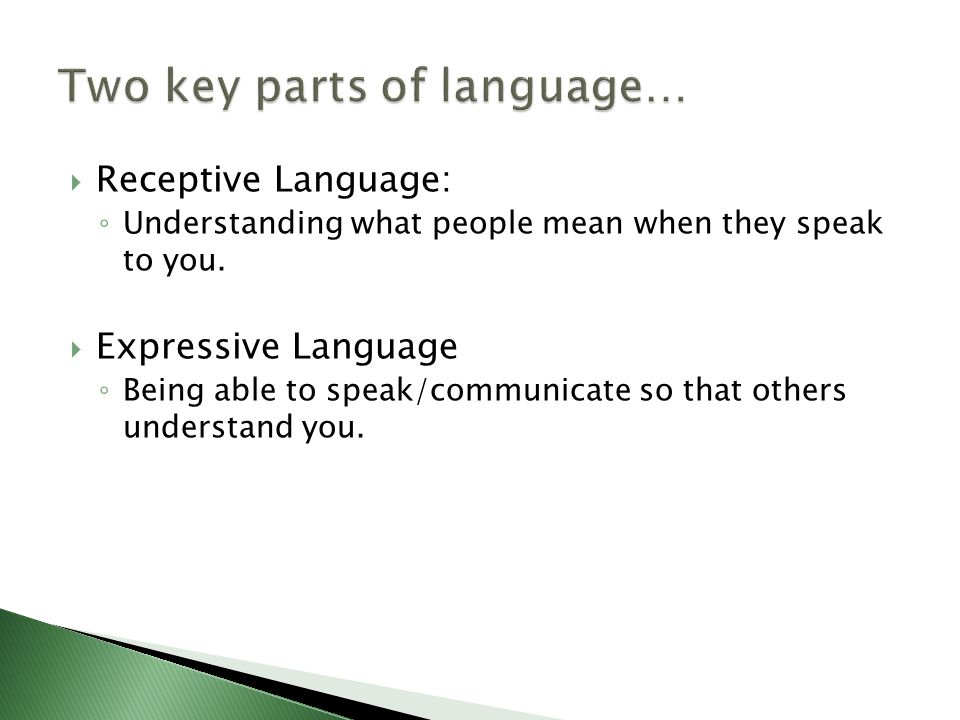  Receptive Language: ◦ Understanding what people mean when they speak to you.