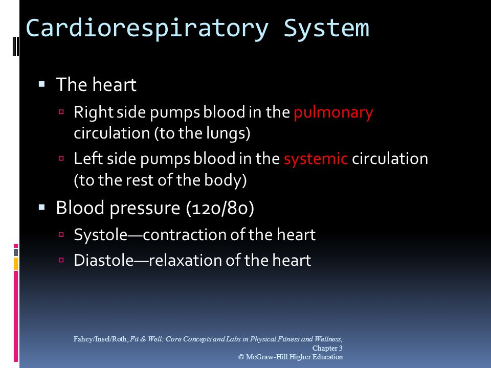 Cardiorespiratory System  The heart  Right side pumps blood in the pulmonary circulation (to the lungs)  Left side pumps blood in the systemic circ