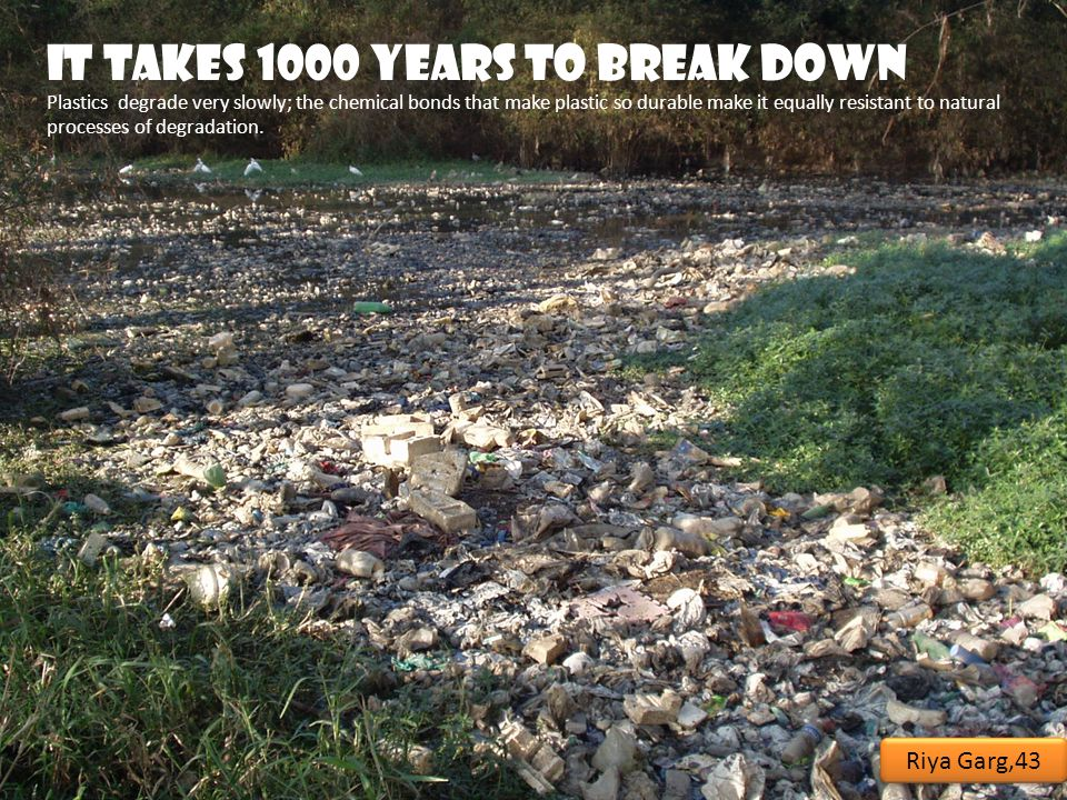 It takes 1000 years to break down Plastics degrade very slowly; the chemical bonds that make plastic so durable make it equally resistant to natural processes of degradation.