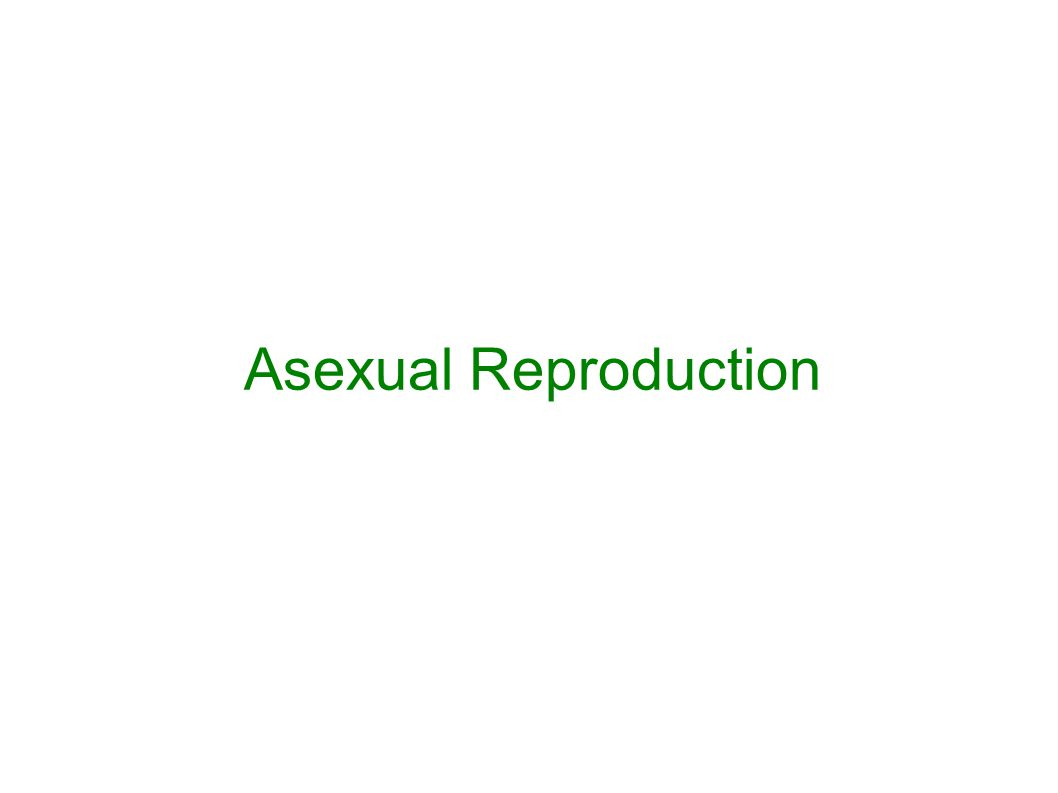 Asexual reproduction occurs when there is only ONE parent involved