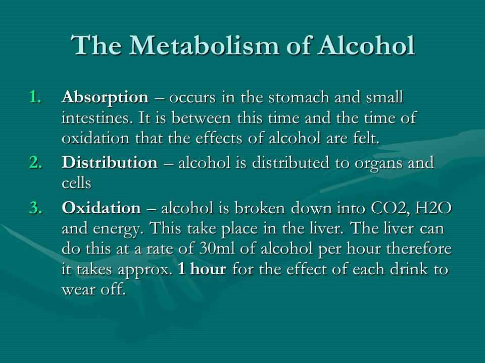 The Metabolism of Alcohol 1.Absorption – occurs in the stomach and small intestines.