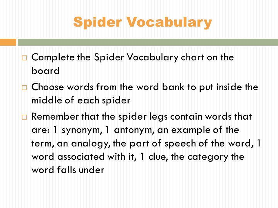  Complete the Spider Vocabulary chart on the board  Choose words from the word bank to put inside the middle of each spider  Remember that the spid