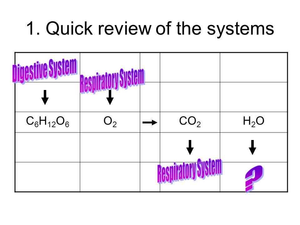 1. Quick review of the systems C 6 H 12 O 6 O2O2 CO 2 H2OH2O