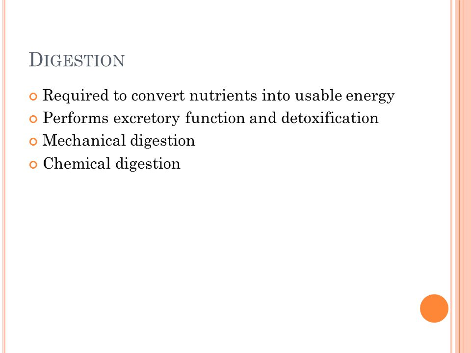 D IGESTION Required to convert nutrients into usable energy Performs excretory function and detoxification Mechanical digestion Chemical digestion