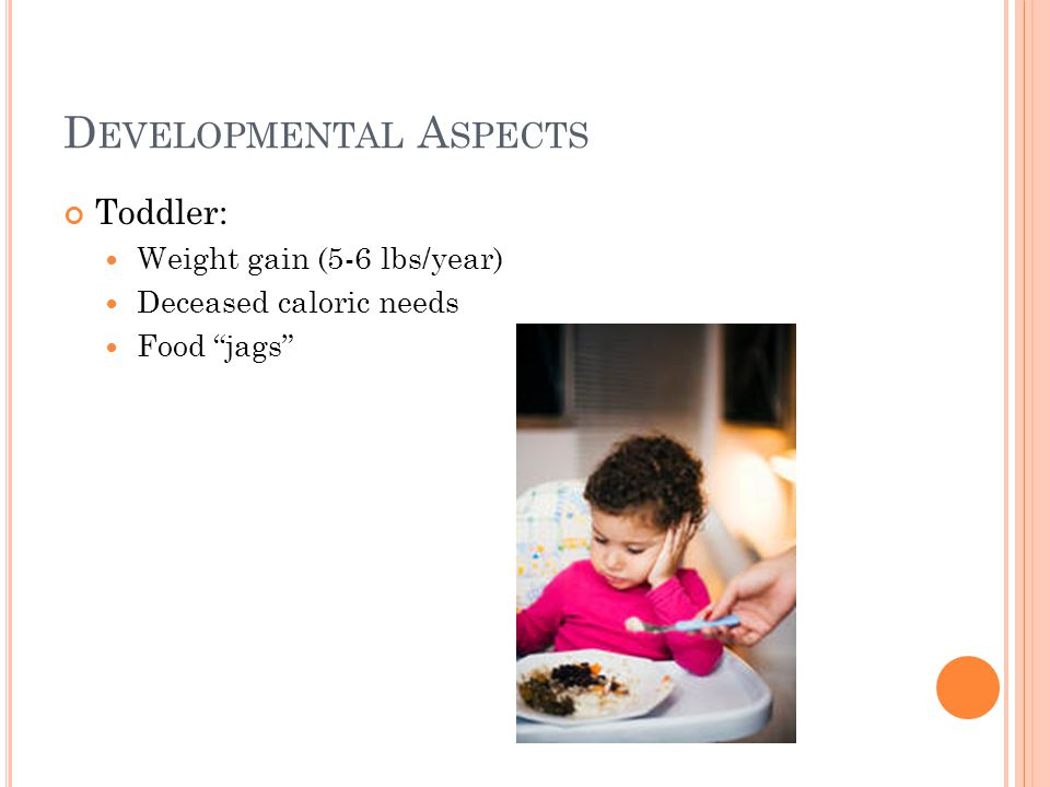 D EVELOPMENTAL A SPECTS Toddler: Weight gain (5-6 lbs/year) Deceased caloric needs Food jags