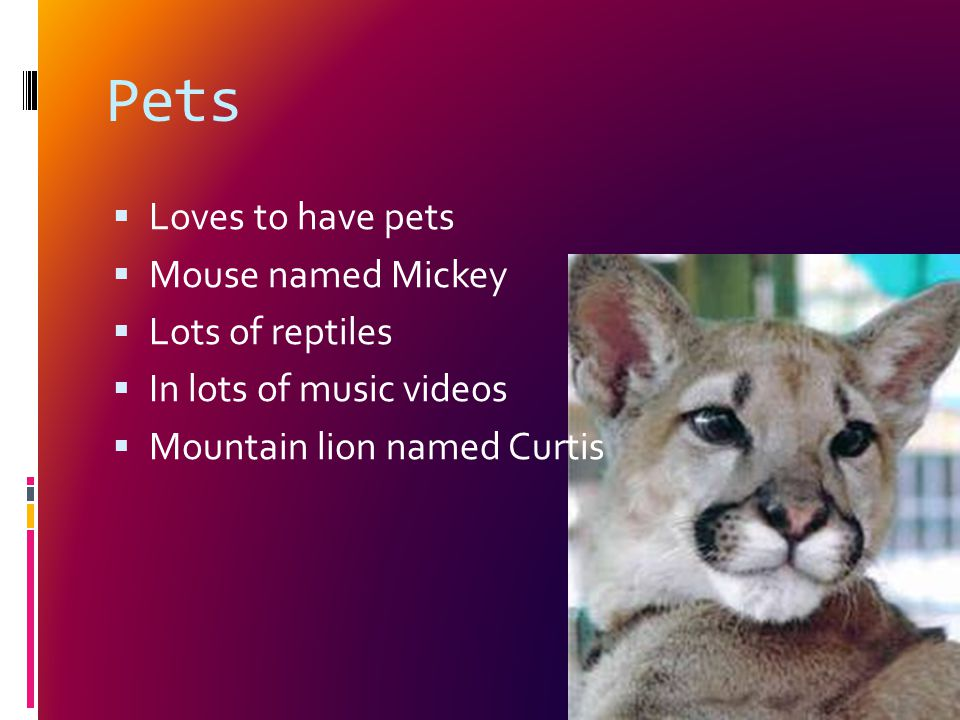 Pets  Loves to have pets  Mouse named Mickey  Lots of reptiles  In lots of music videos  Mountain lion named Curtis
