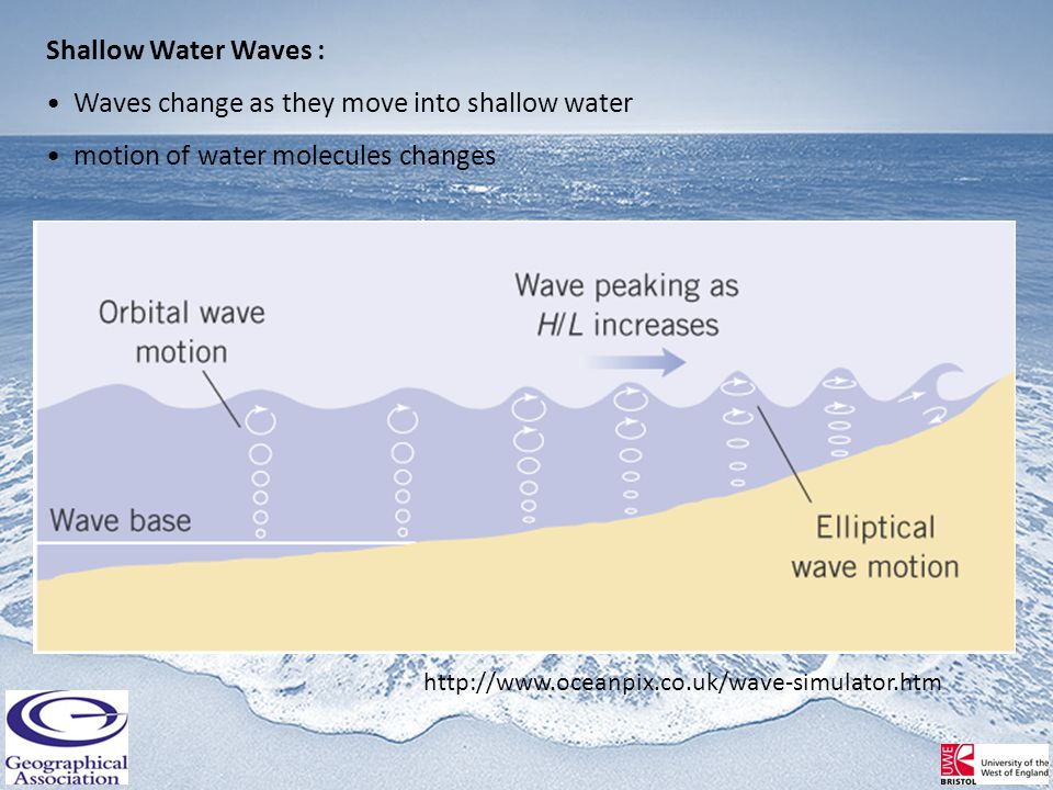 Shallow Water Waves : Waves change as they move into shallow water motion of water molecules changes http://www.oceanpix.co.uk/wave-simulator.htm