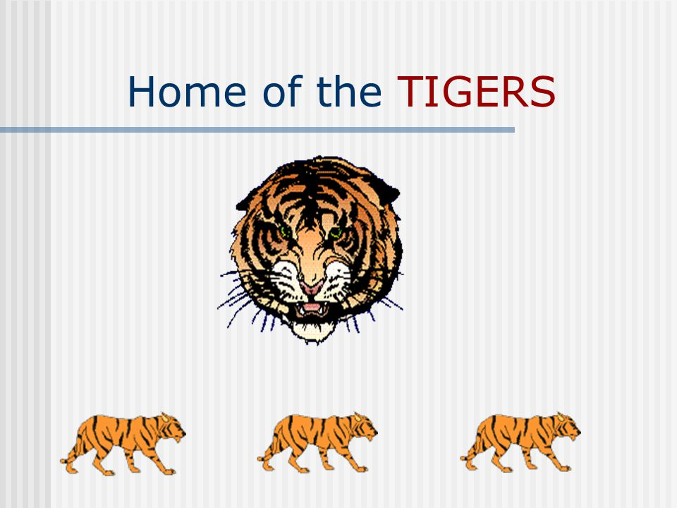 Home of the TIGERS