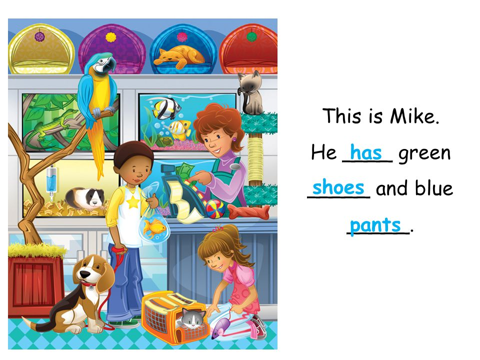This is Mike. He ____ green _____ and blue _____.
