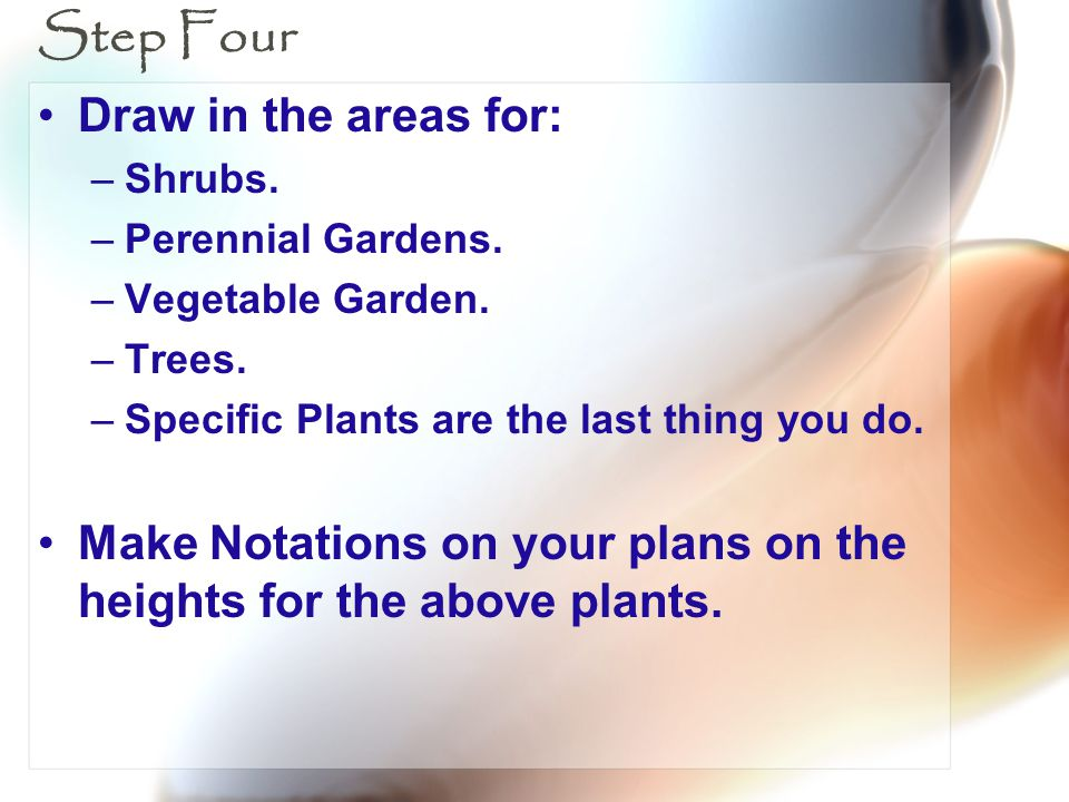 Step Four Draw in the areas for: –Shrubs. –Perennial Gardens. –Vegetable Garden. –Trees. –Specific Plants are the last thing you do. Make Notations on