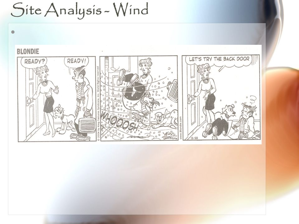 Site Analysis - Wind