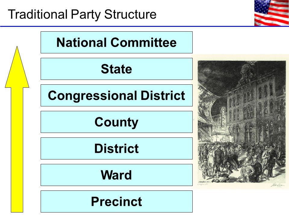 Traditional Party Structure Precinct Ward District County Congressional District State National Committee