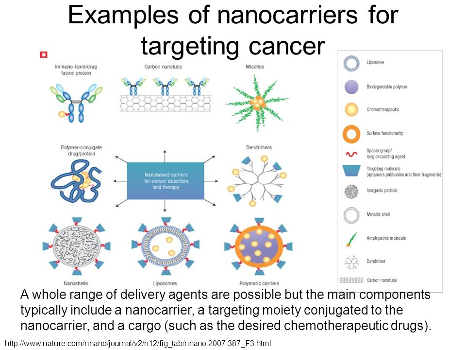 Examples of nanocarriers for targeting cancer A whole range of delivery agents are possible but the main components typically include a nanocarrier, a targeting moiety conjugated to the nanocarrier, and a cargo (such as the desired chemotherapeutic drugs).
