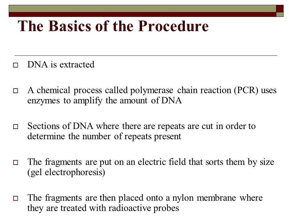 The Basics of the Procedure  DNA is extracted  A chemical process called polymerase chain reaction (PCR) uses enzymes to amplify the amount of DNA 
