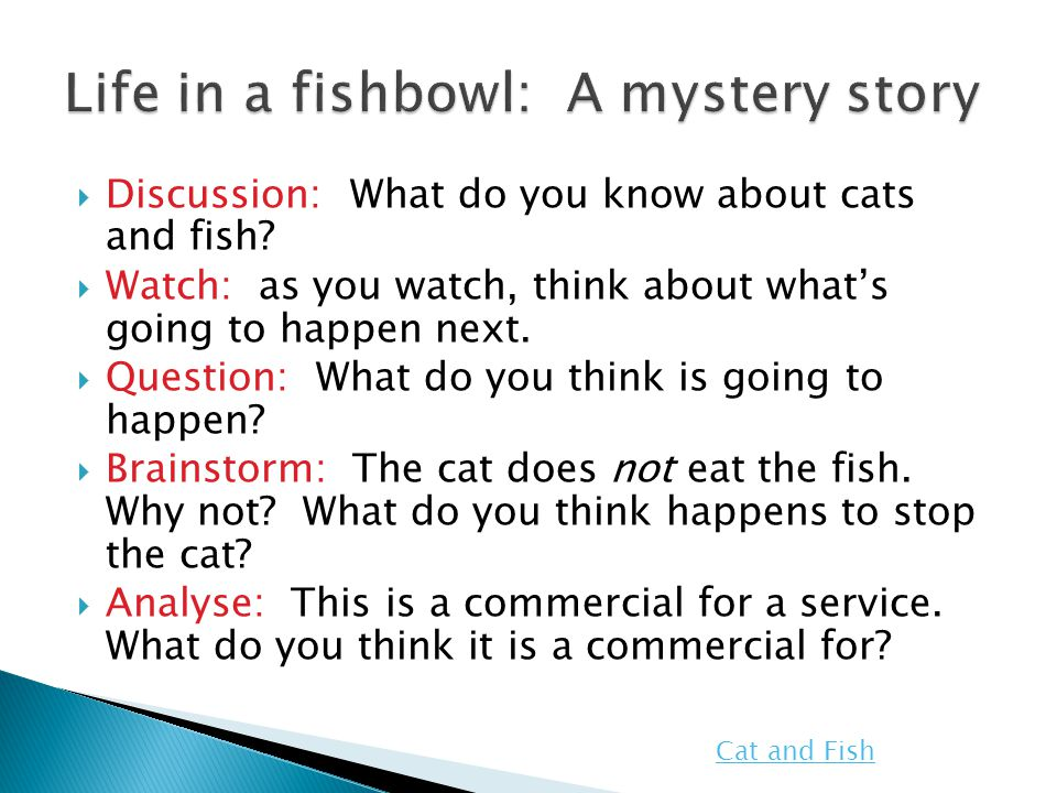  Discussion: What do you know about cats and fish?  Watch: as you watch, think about what's going to happen next.  Question: What do you think is g