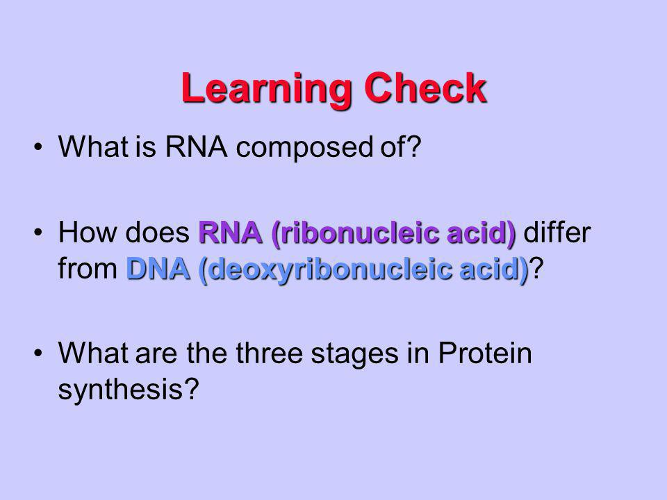 Transcription Translation DNA mRNA Ribosome Protein Prokaryotic Cell – No nucleus DNA  RNA  Protein
