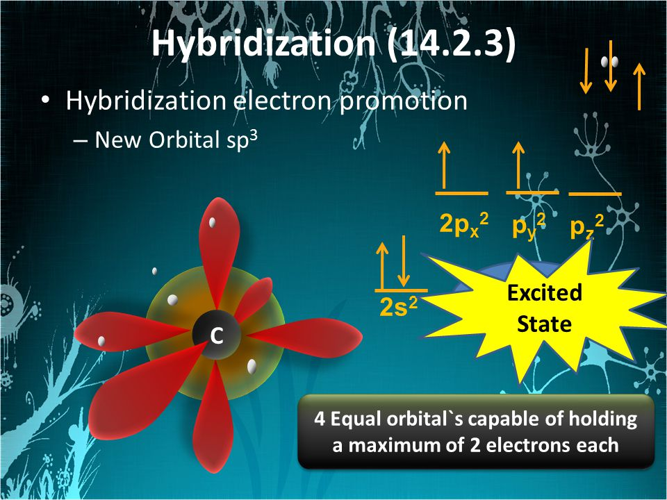 Hybridization (14.2.3) Hybridization electron promotion – New Orbital sp 3 2p x 2 p y 2 pz2pz2 2s 2 Ground State C C Excited State 4 Equal orbital`s capable of holding a maximum of 2 electrons each