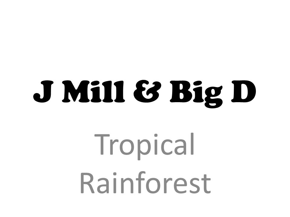 J Mill & Big D Tropical Rainforest