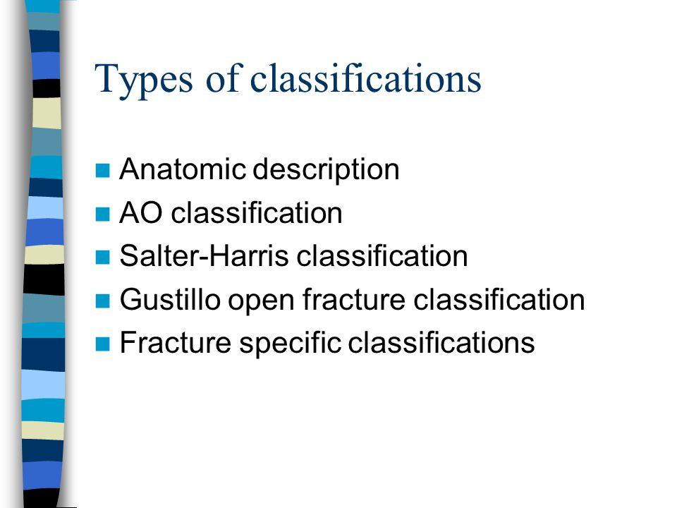 classification essay on friends steps in writing a term paper borg phd thesis myxobacteria salmonid