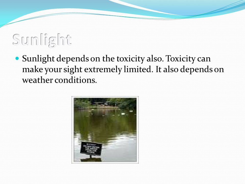 Sunlight depends on the toxicity also. Toxicity can make your sight extremely limited.