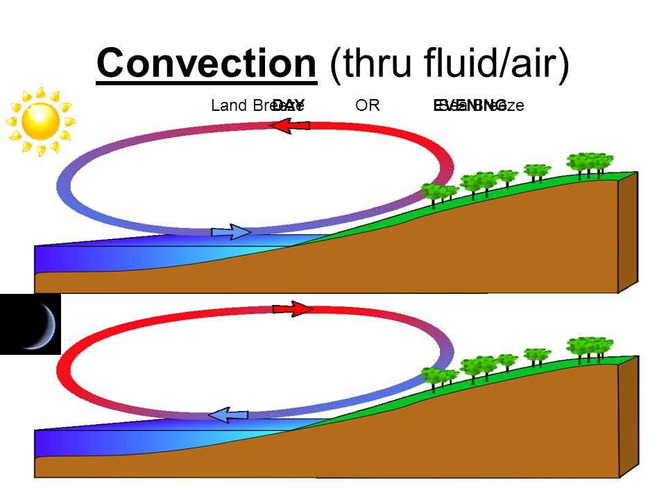 Convection (thru fluid/air) Land BreezeORSea BreezeDAYEVENING