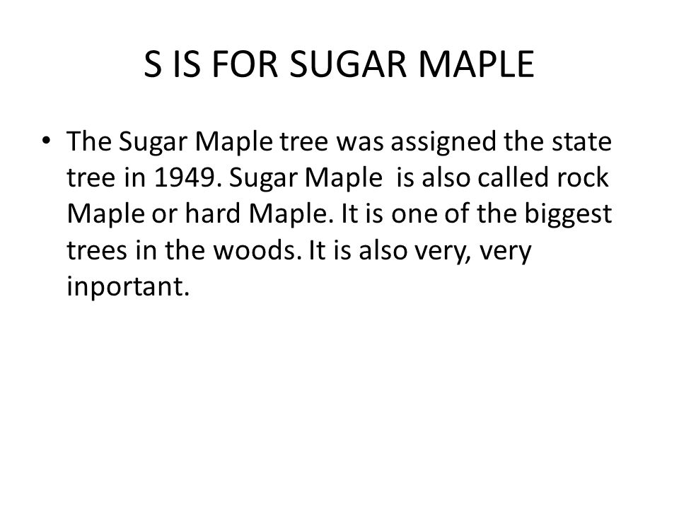 S IS FOR SUGAR MAPLE The Sugar Maple tree was assigned the state tree in 1949. Sugar Maple is also called rock Maple or hard Maple. It is one of the b