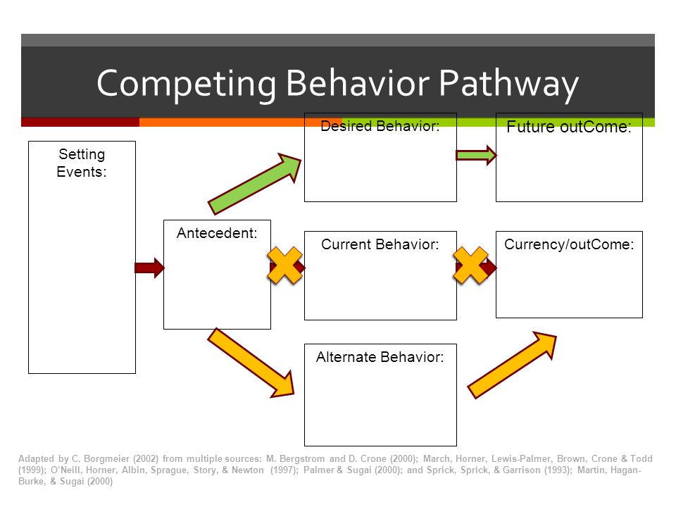 Competing Behavior Pathway Adapted by C. Borgmeier (2002) from multiple sources: M. Bergstrom and D. Crone (2000); March, Horner, Lewis-Palmer, Brown,