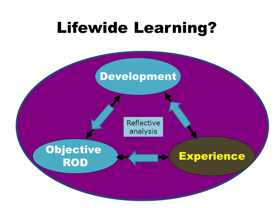 Development Objective ROD Experience Lifewide Learning Reflective analysis