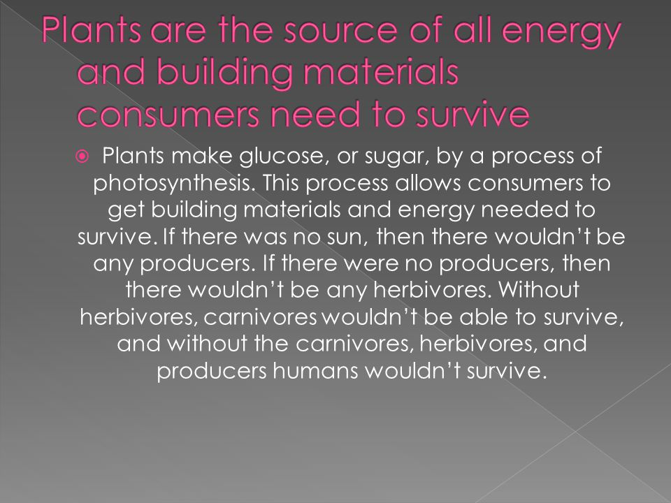  Plants make glucose, or sugar, by a process of photosynthesis.