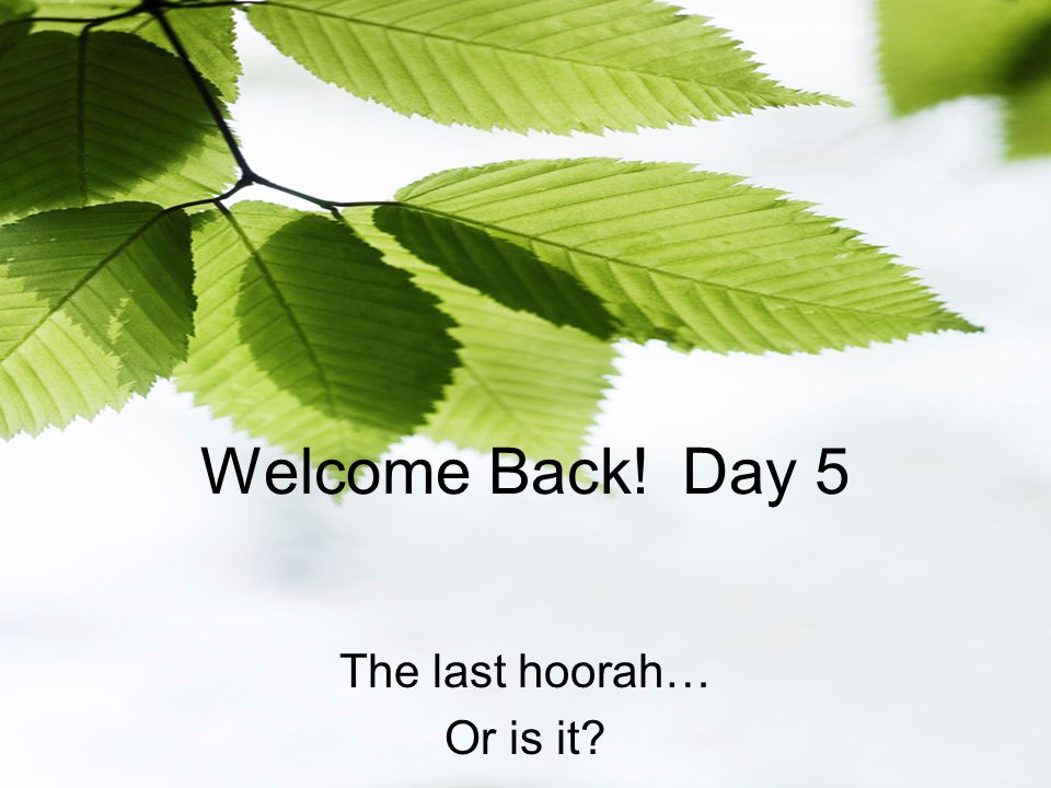 Welcome Back! Day 5 The last hoorah… Or is it