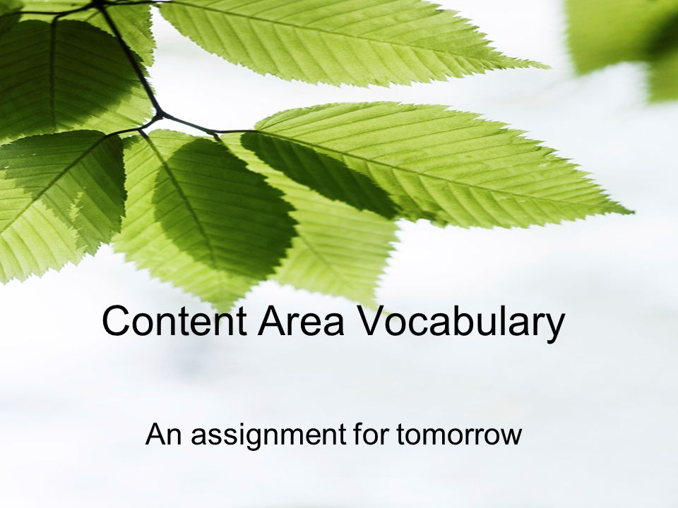Content Area Vocabulary An assignment for tomorrow