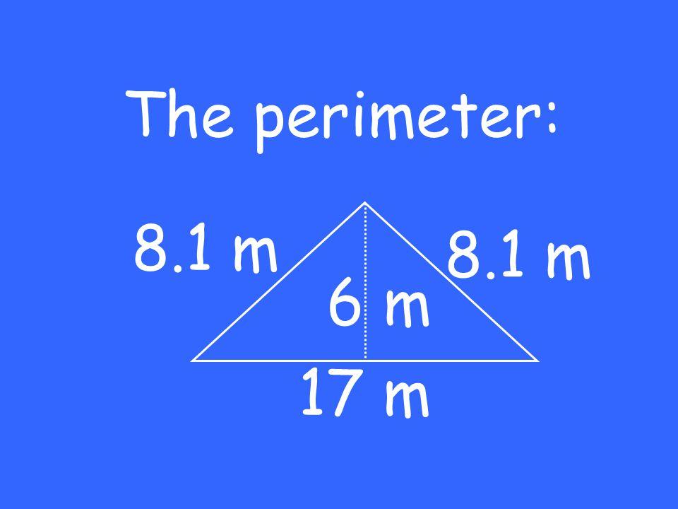 The perimeter: 17 m 6 m 8.1 m