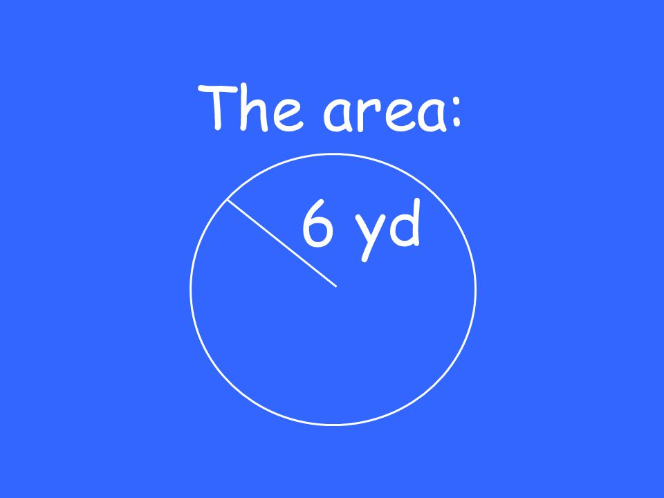 The area: 6 yd
