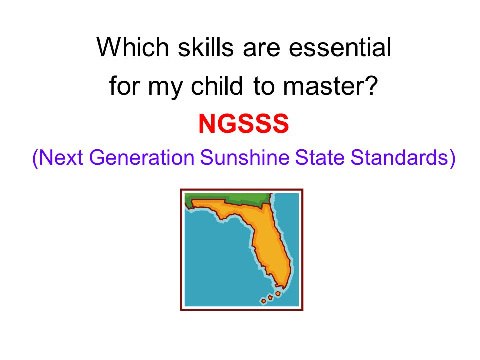 Which skills are essential for my child to master NGSSS (Next Generation Sunshine State Standards)