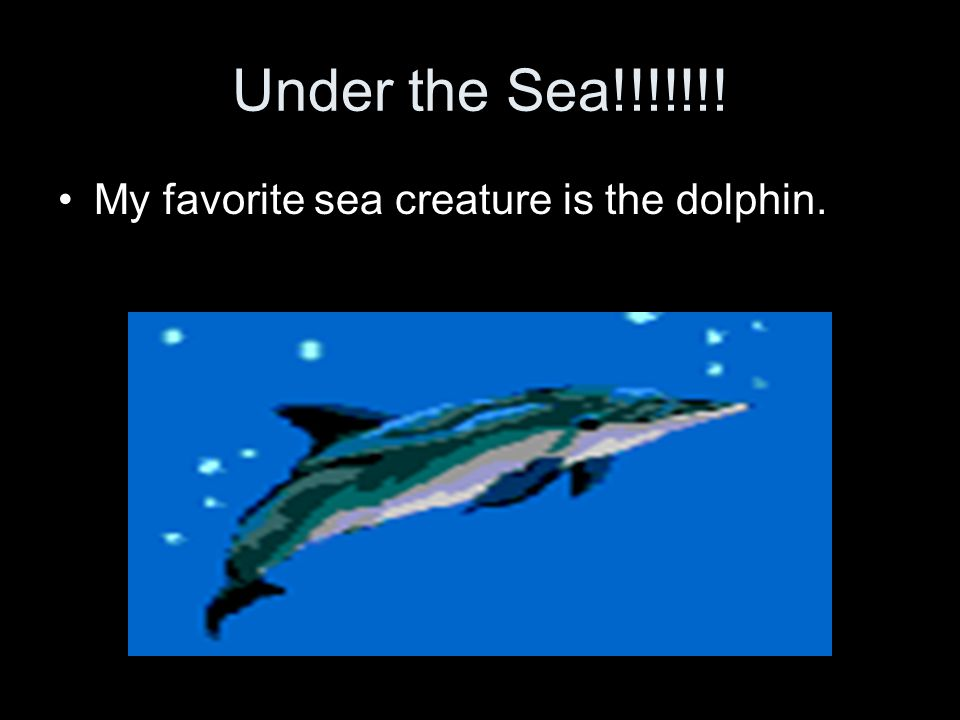 Under the Sea!!!!!!! My favorite sea creature is the dolphin.