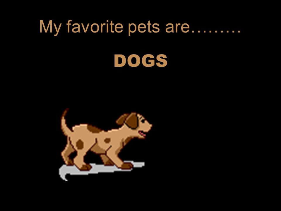 My favorite pets are……… DOGS