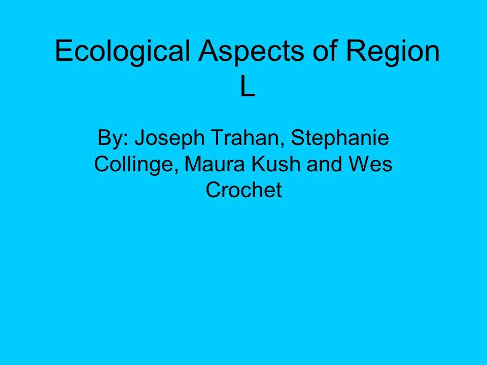 Region L