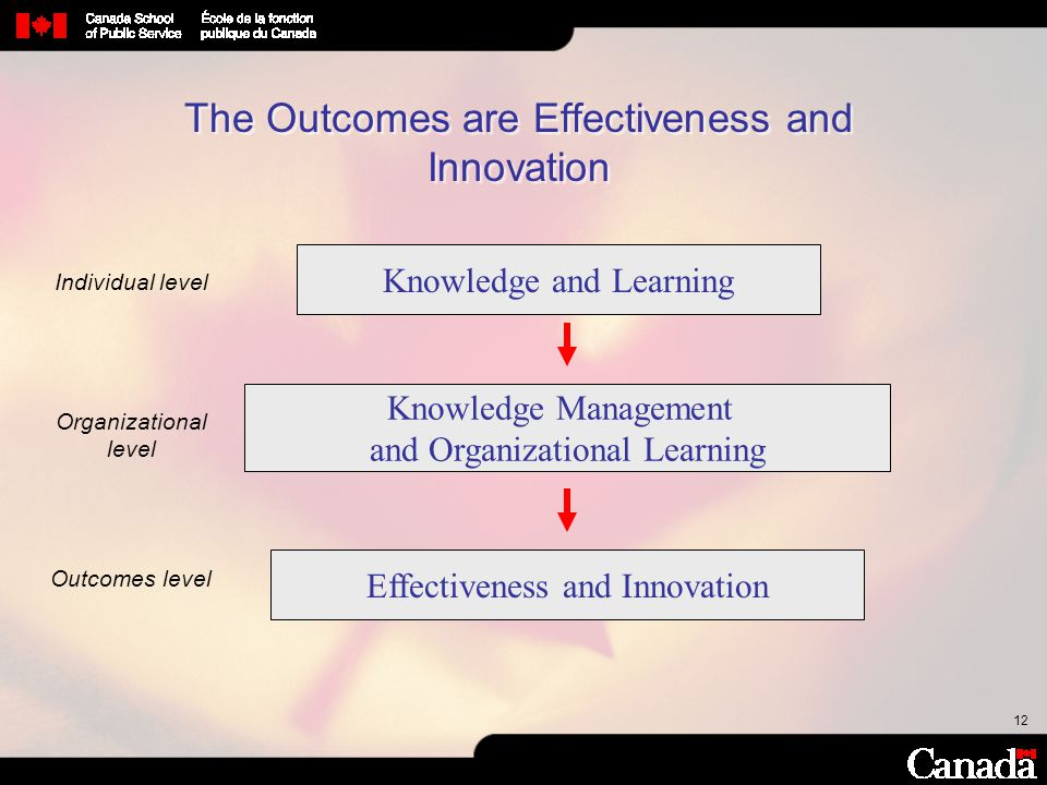 12 The Outcomes are Effectiveness and Innovation Effectiveness and Innovation Knowledge and Learning Knowledge Management and Organizational Learning