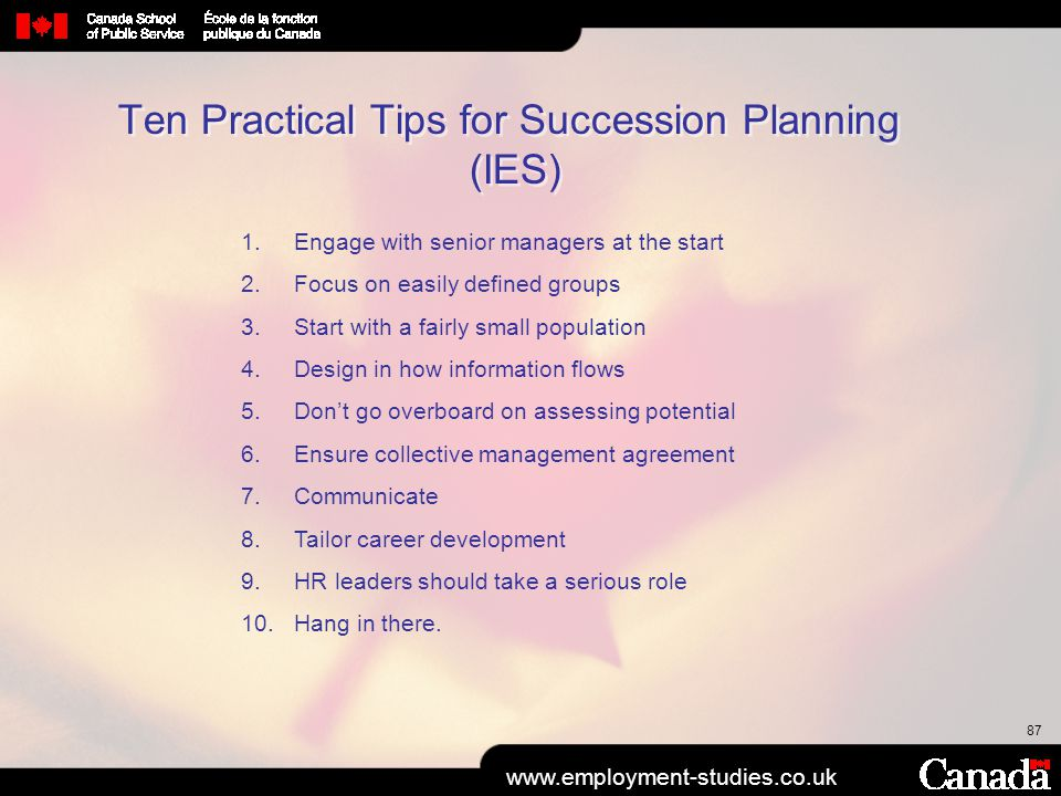 87 Ten Practical Tips for Succession Planning (IES) www.employment-studies.co.uk 1.Engage with senior managers at the start 2.Focus on easily defined