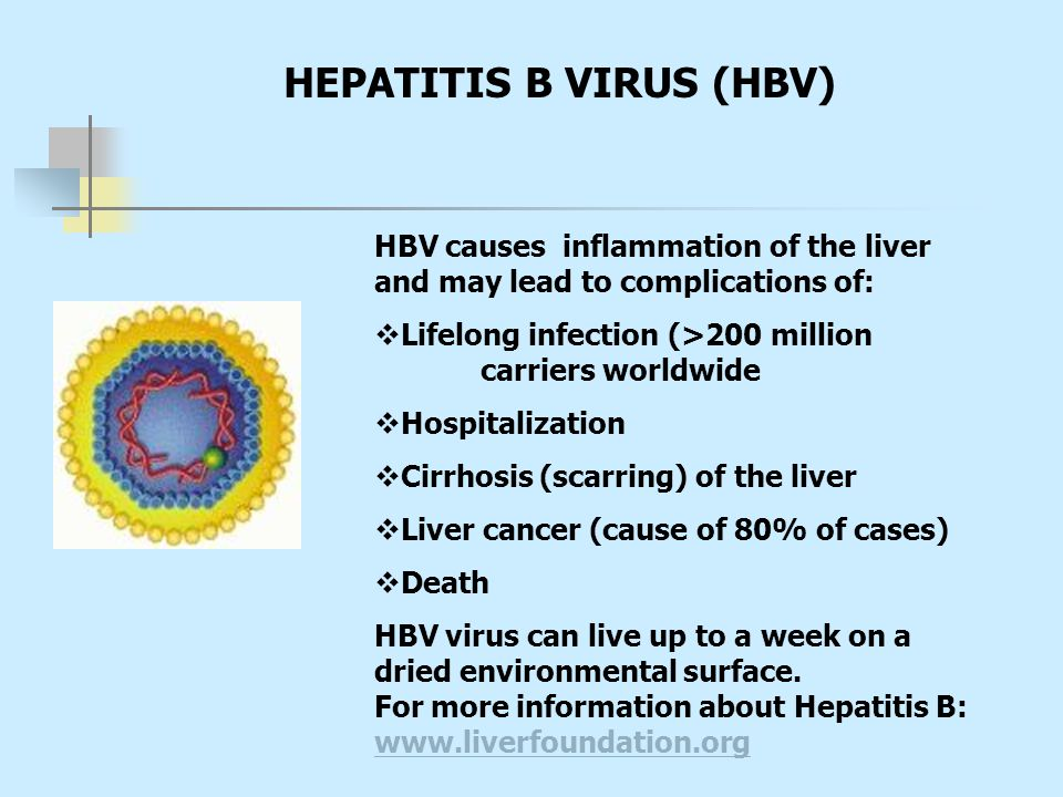 HBV causes inflammation of the liver and may lead to complications of:  Lifelong infection (>200 million carriers worldwide  Hospitalization  Cirrh