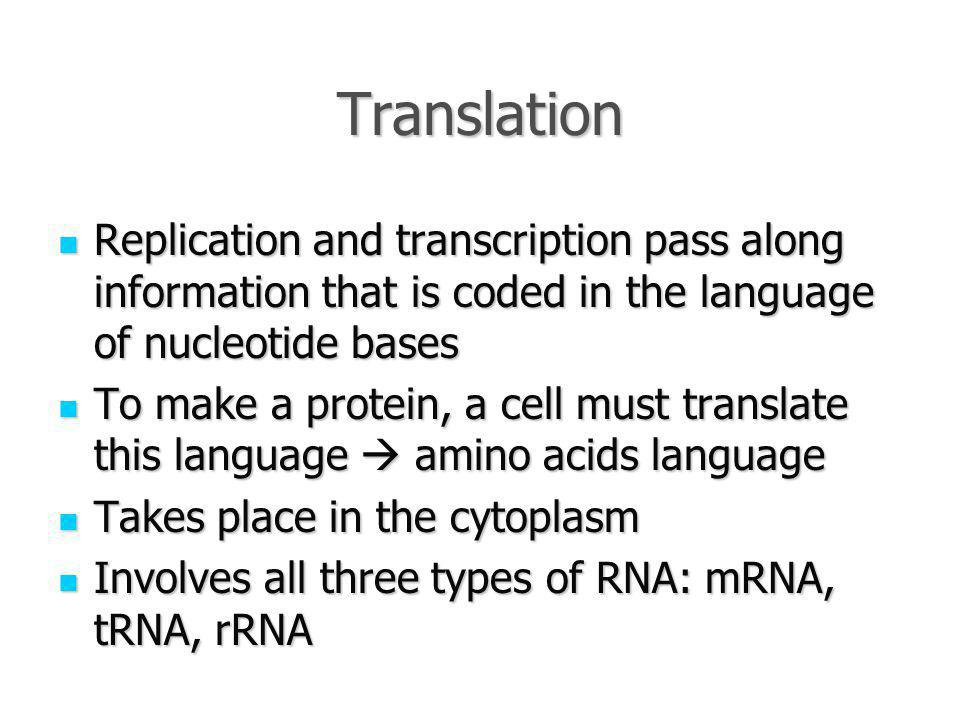 Translation Replication and transcription pass along information that is coded in the language of nucleotide bases Replication and transcription pass along information that is coded in the language of nucleotide bases To make a protein, a cell must translate this language  amino acids language To make a protein, a cell must translate this language  amino acids language Takes place in the cytoplasm Takes place in the cytoplasm Involves all three types of RNA: mRNA, tRNA, rRNA Involves all three types of RNA: mRNA, tRNA, rRNA