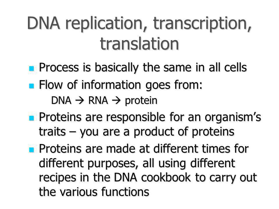 DNA replication, transcription, translation Process is basically the same in all cells Process is basically the same in all cells Flow of information