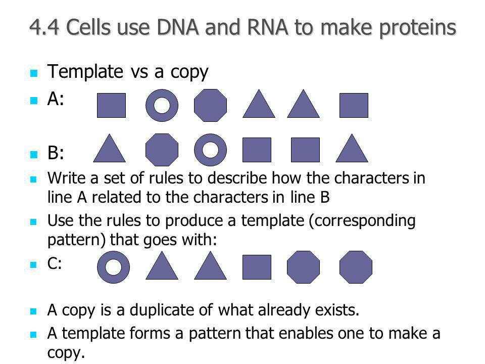 4.4 Cells use DNA and RNA to make proteins Template vs a copy Template vs a copy A: A: B: B: Write a set of rules to describe how the characters in line A related to the characters in line B Write a set of rules to describe how the characters in line A related to the characters in line B Use the rules to produce a template (corresponding pattern) that goes with: Use the rules to produce a template (corresponding pattern) that goes with: C: C: A copy is a duplicate of what already exists.